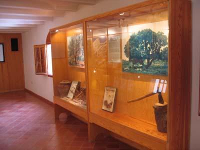 museo_m_14.jpg