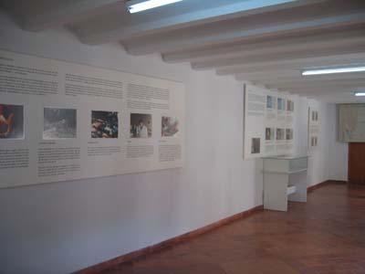 museo_m_17.jpg